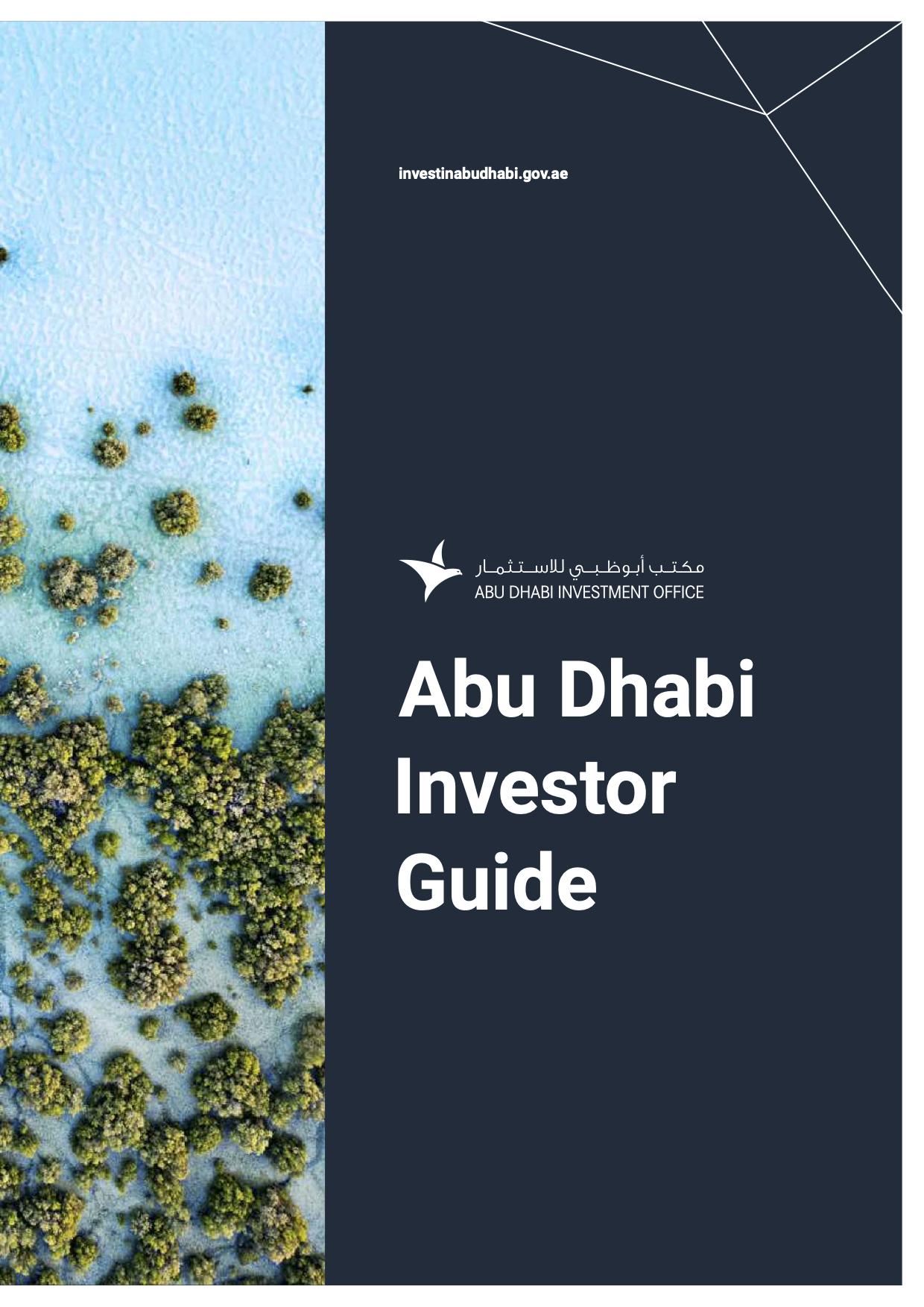 ADIO Investor guide 2021