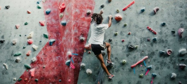 INSEAD Knowledge – Not Everyone Can Be Agile