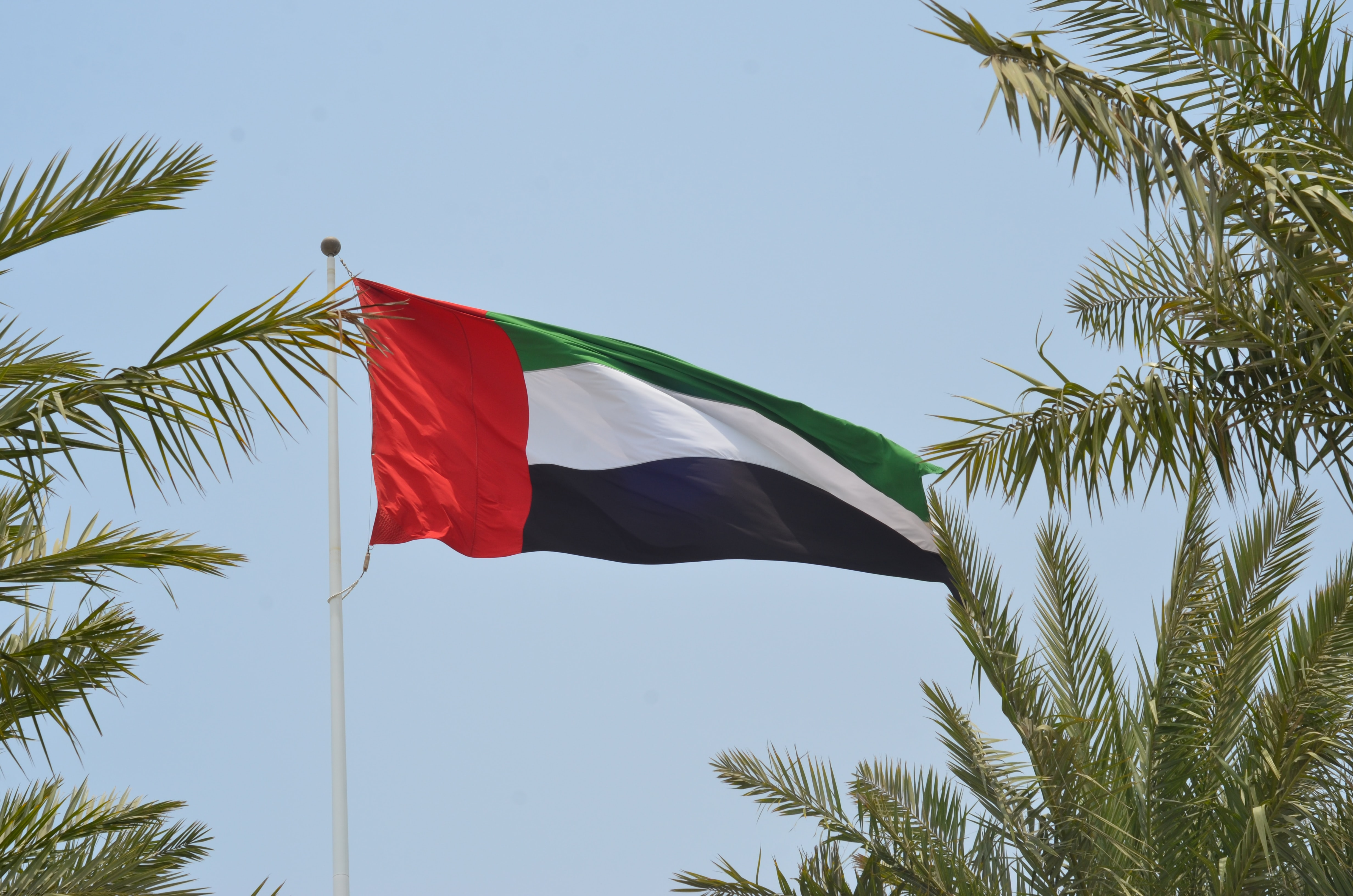 Investment in the UAE: how to launch a start-up company?