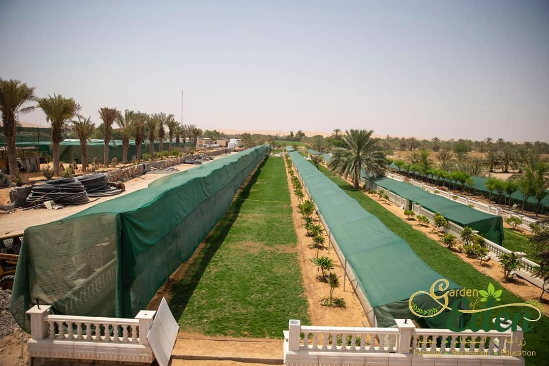 this-agritech-sme-is-striving-to-turn-the-uaes-unforgiving-desert-into-a-garden-of-eden
